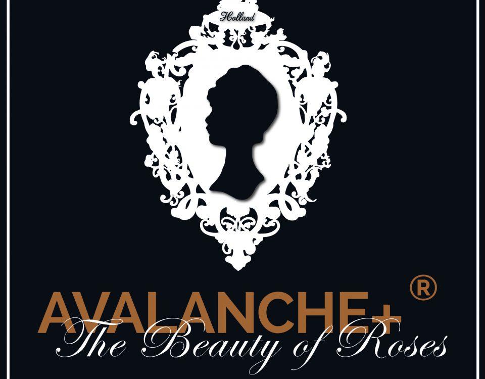 Avalanche+®