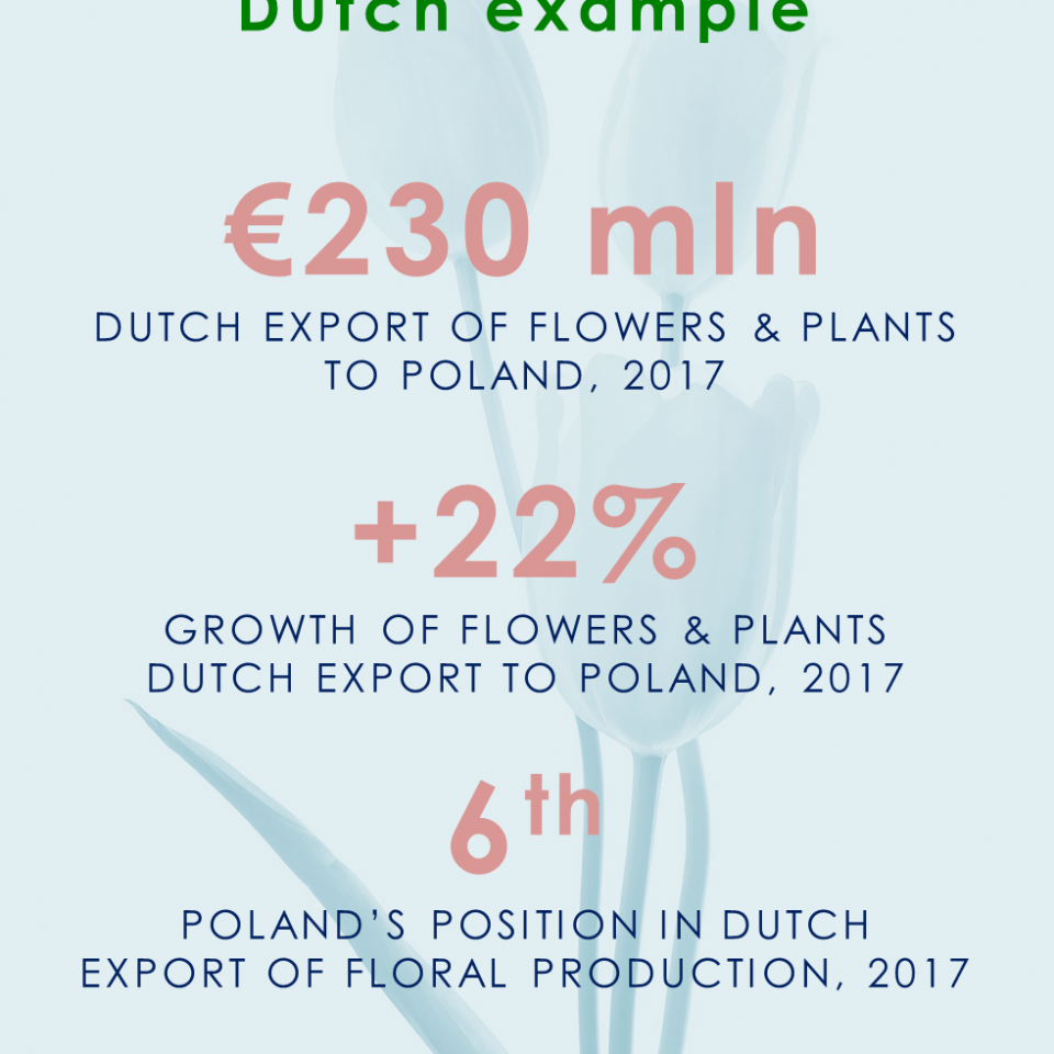 Why exhibit on Flower Expo Poland? Dutch example