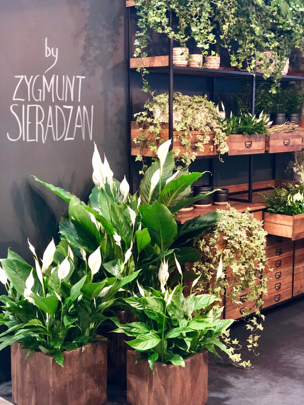 Flower Expo Poland 2019, showroom #UrbanJungle